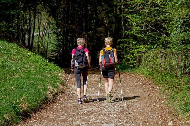 Kniearthrose Nordic Walking